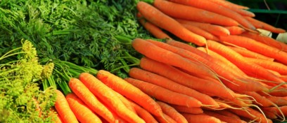 Why you should LOVE carrot?