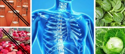 The Primary cause of Osteoporosis